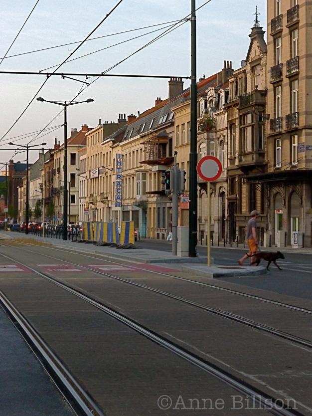 Bij de tramhalte (noord): Nieuwpoortlaan, Brussel.