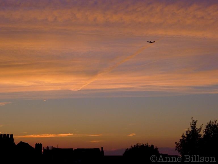 Vliegtuig: Sint-Gillis.