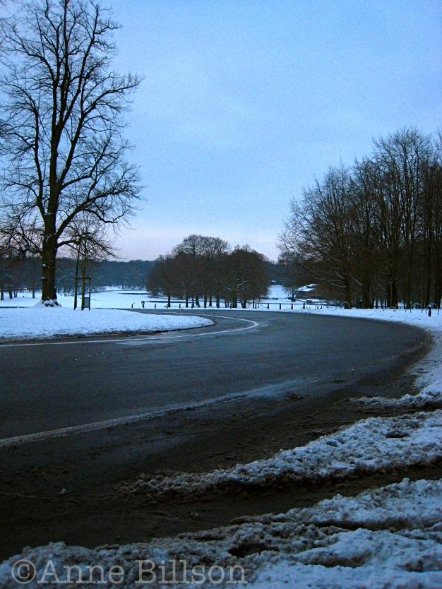 Sneeuw: Denneboslaan, Ter Kamerenbos, Brussel.