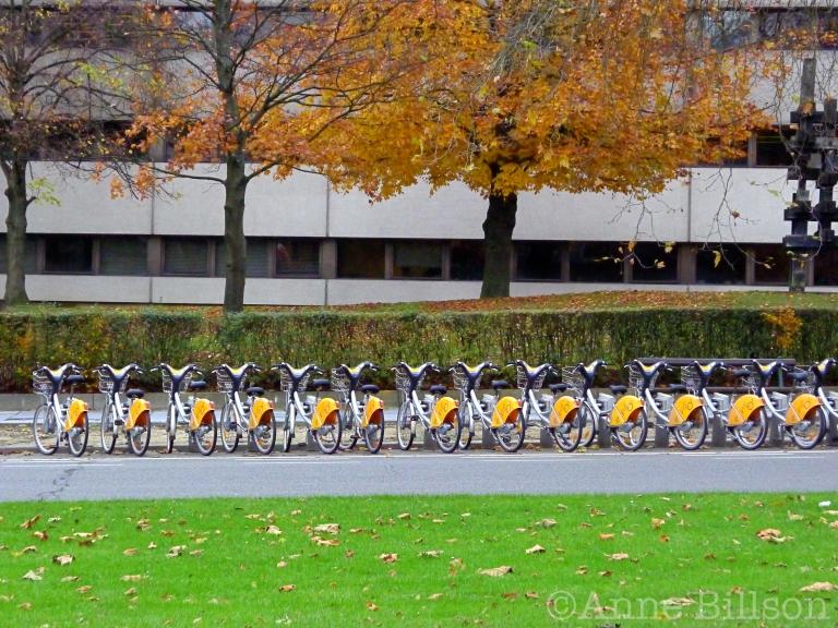 Herfst fietsen: Franklin Rooseveltlaan, Brussel.