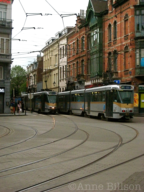tram8102 copy