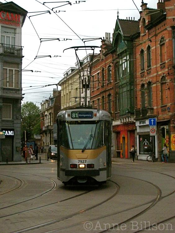 tram8103 copy