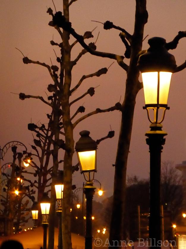 Lampen en bomen: Kruidtuinlaan, Brussel.