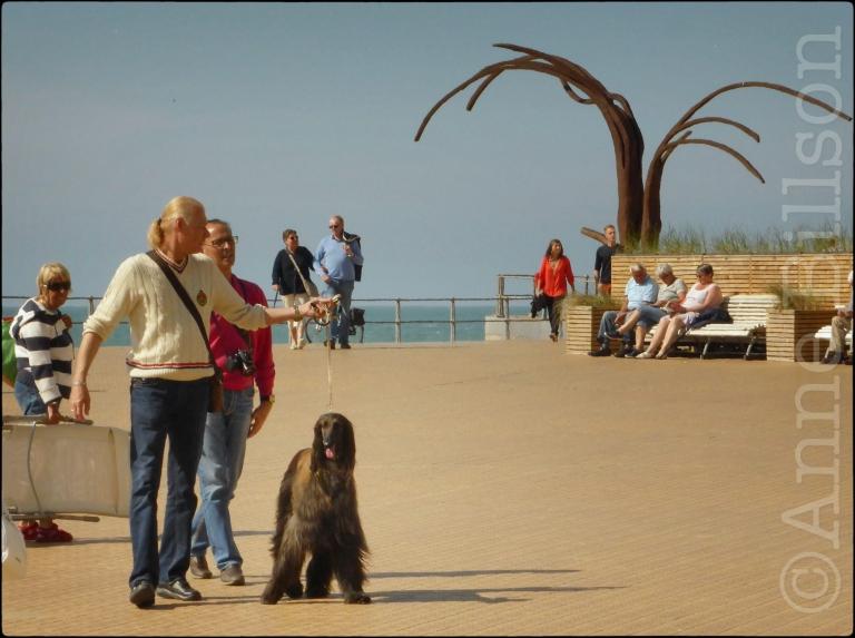 Dansende golven (beeldhouwer: Patrick Steen): Albert I-promenade, Oostende.