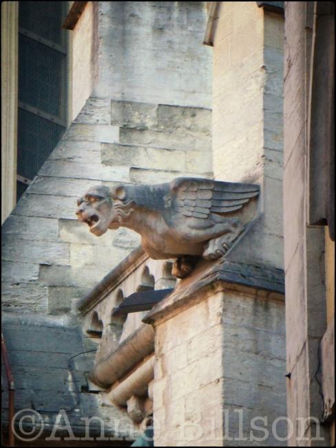 Waterspuwer: Sint-Michiels en Sint Goedelekathedraal, Brussel.