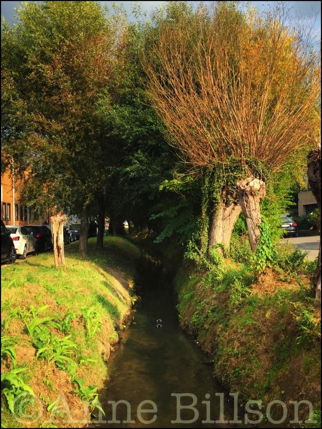 Beek: tussen Hoge Beekkant en 's Gravenmolenstraat, Grimbergen.
