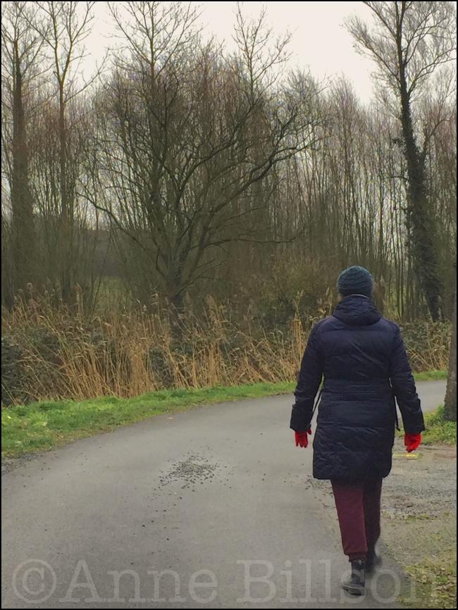 Het pad: Lessen, Henegouwen.